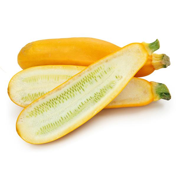 zuquini yellow